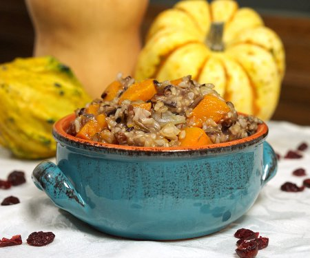 Butternut Squash Wild Rice Pilaf With Cranberries