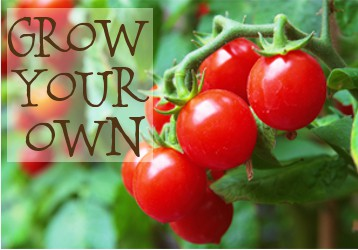 Planning For A Garden {GROW YOUR OWN}