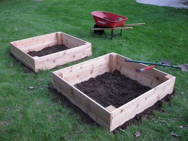 Installing Raised Beds with Curious Cuisiniere