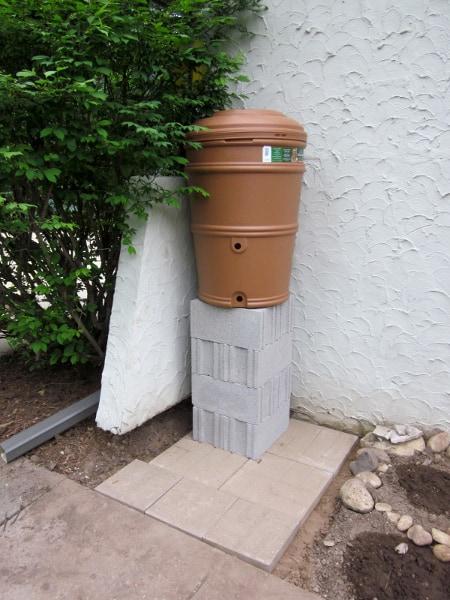 Rain Barrel with Curious Cuisiniere
