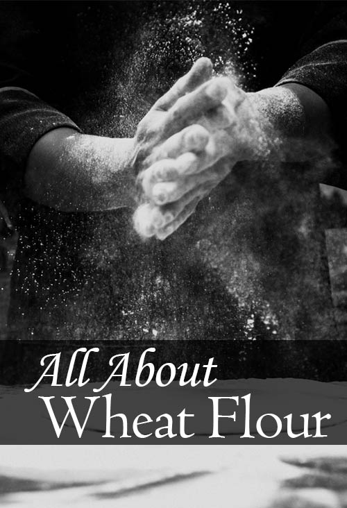 Have you ever wondered about the different types of wheat flour in the baking aisle? We're breaking down the differences between wheat flour and white flour, self rising and bread flour, even spelt and kamut. This article is everything you could want to know about wheat flour.