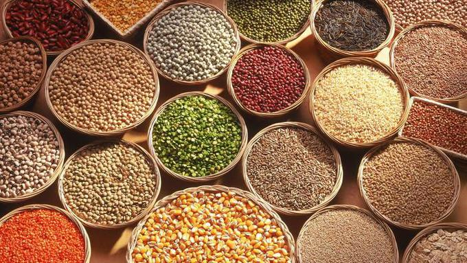 different-types of grains