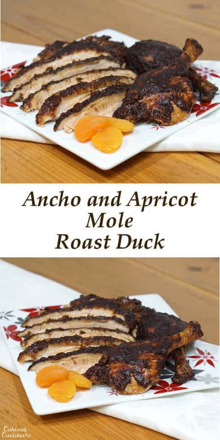 Change up your holiday dinner routine with this recipe for mole seasoned Roast Duck served with a rich Ancho and Apricot Mole Sauce paired perfectly with Gallo Family Vineyards Pinot Grigio and Cabernet Sauvignon wine. #SundaySupper #GalloFamily | www.curiouscuisiniere.com
