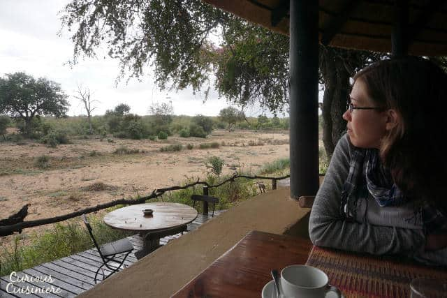 Enjoying the View at Motswari Private Game Reserve | www.CuriousCuisiniere.com
