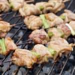Negima Yakitori (Japanese Chicken Skewers)