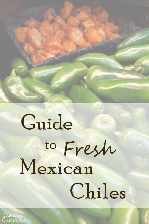 This guide to fresh Mexican chile peppers has all you need to know about six essential fresh chiles for Mexican cooking, including substitutions, and authentic recipes.  | www.CuriousCuisiniere.com