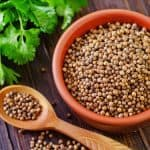 What is the difference between cilantro and coriander?