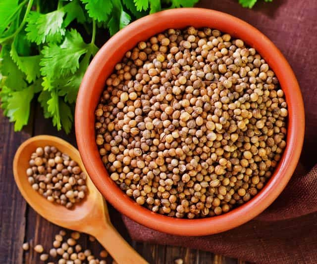 What is coriander? Coriander seeds are an aromatic spice with a citrus and floral aroma. They are used to add dept of flavor to dishes in numerous cultures. | www.CuriousCuisinire.com
