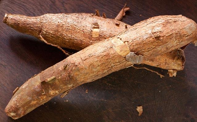 Cassava root | www.CuriousCuisiniere.com