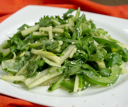 Chinese Tiger Salad - Lao Hu Cai - with cucumbers, cilantro, green peppers in a sesame oil dressing. on a white plate with a red background. small image.